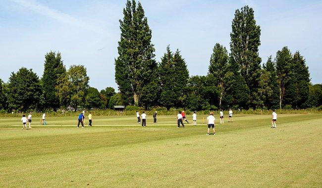 Sports Pitches landscape